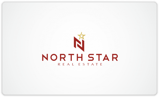 North Star logo N1
